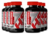 Hoodia appetite - HOODIA GORDONII POWDER 2000 MG - support digestion (6 Bottles)