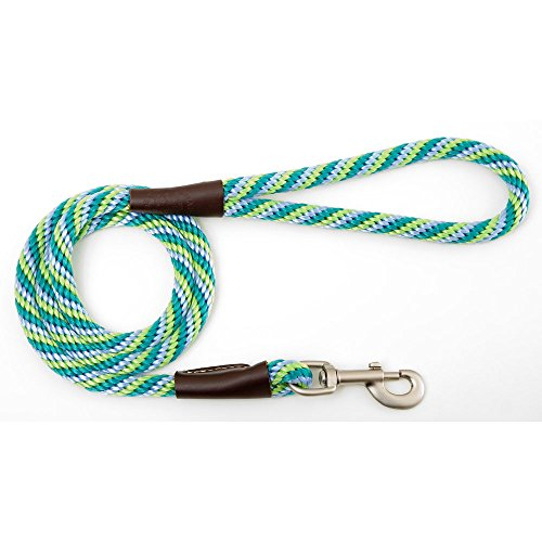 Mendota Dog Products Snap Leash, 1/2-Inch by 6-Feet, Twist Sea Foam