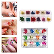 EYX Formula Set of 24 Different Colors Five Flower Variety Flower DIY Nail Art 3D Nail Stickers Nail Supplies Dried Flowers Nail Decoration Tool for Manicure
