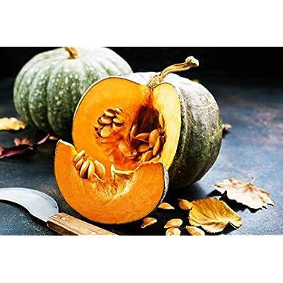 AchmadAnam - Seeds - Heirloom, Thai Rai Kaw Tok Pumpkin, Limited Availability. E8 : Garden & Outdoor