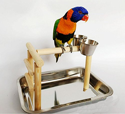 Wooden Parrot Stand Bird Standing Fun Play Cage Foot Toy for Claws - Block Foot Bird