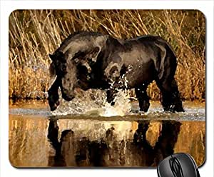 Black Stallion Mouse Pad, Mousepad (Horses Mouse Pad, 10.2 x 8.3 x 0.12 inches)