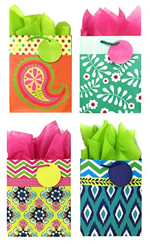 Colorful Gift Bags + Tissue Paper (4 Medium Gift Bags + Tissue Paper, All Occasion) by Blue House Group