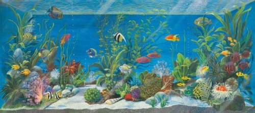 acquario-canvas-medium-45x20