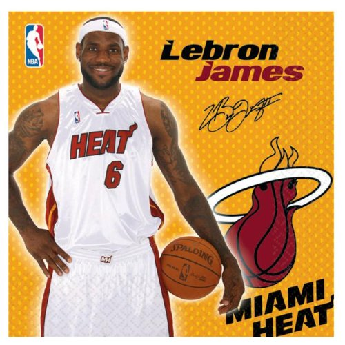 Miami Heat Lebron James Basketball - Lunch Napkins Party -