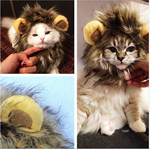 Molie Accrocheuse pet perruque de circonférence de la tête de 26 à 30 cm drôle lion coiffures vogue & classique chat/chien foulard