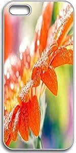 Dseason Iphone 5S case, Slim Hard Unique Design After the rain of the flowers