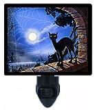 Night Light - Window Decorations - Halloween Black Cat - LED NIGHT LIGHT