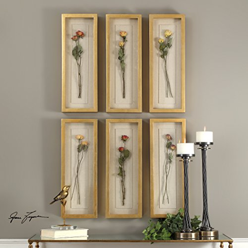 Rosalie Long Stem Shadow Box S/6 - Designer Long Stem Roses