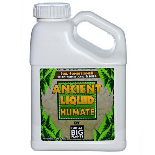 Liquid Soil Conditioner - Great Big Plants, LLC Ancient Liquid Humate, Humic Acid and Kelp, Soil Conditioner