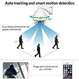 IMPORX CCTV 20X Auto Tracking PTZ IP