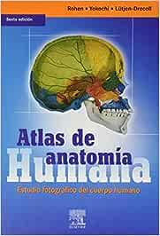 Atlas de anatomia humana. estudio fotografico del cuerpo