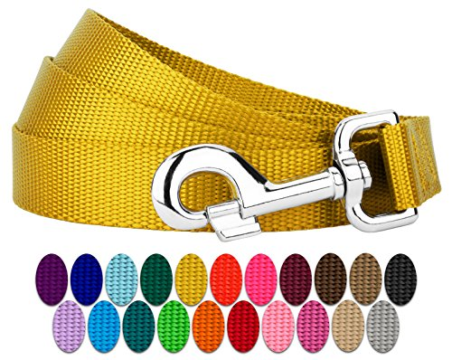 Country Brook Petz | Vibrant 22 Color Selection | Nylon Dog Leash (Gold, 1 inch Width, 4 Foot)