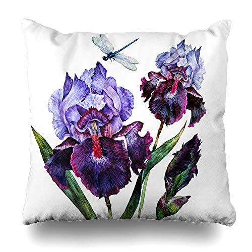 - Ahawoso Throw Pillow Cover Drawing Purple Flower Watercolor Iris Bouquet Dragonfly Nature Vintage Blue Painting Artistic Design Decorative Cushion Case Square 20