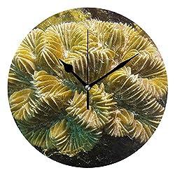 HangWang Wall Clock Meandrina Meandrites Silent Non Ticking Decorative Round Digital Clocks for Home/Office/School Clock