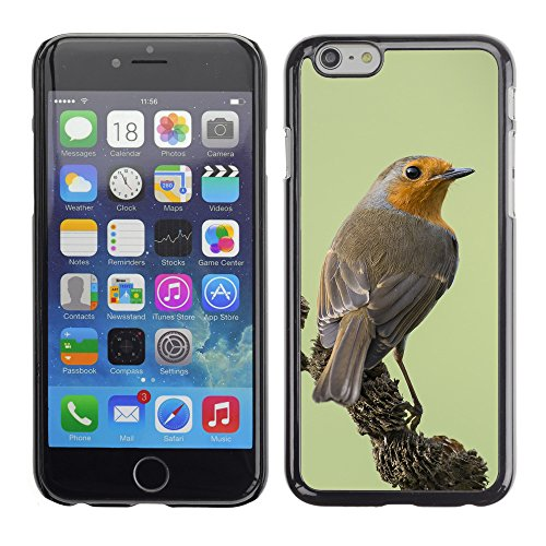 Premio Sottile Slim Cassa Custodia Case Cover Shell // F00011166 oiseau // Apple iPhone 6 6S 6G PLUS 5.5""