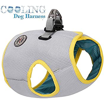 FOREYY Dog Cooling Harness for Outdoor Adventure Training Walking, Breathable Pet Cooler Vast Jacket Clothes for Small Medium Large Dogs (M)