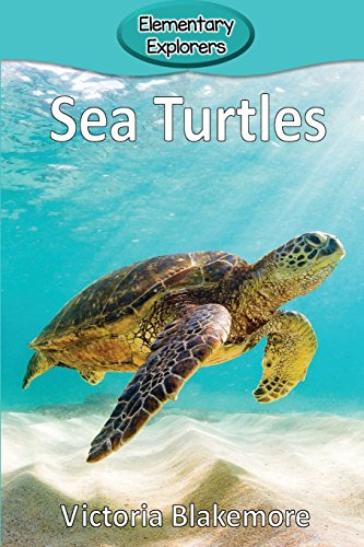 Sea Turtles (Elementary Explorers)