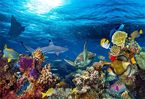 LFEEY 12x8ft Coral and Fish in The Sea Backdrop Aquarium Underwater Seascape Photography Background Marin Ocean Diving Atoll Reef Summer Photo Studio Props Kid Boy Girl Artistic Portrait Wallpaper -
