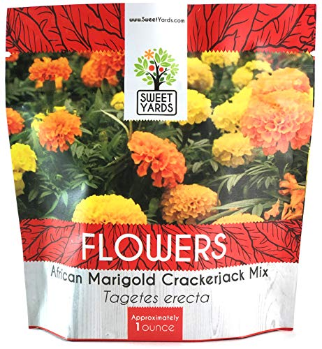 African Marigold Seeds Crackerjack Mix - Bulk 1 Ounce Packet - Over 10,000 Seeds - Huge Orange and Yellow Blooms