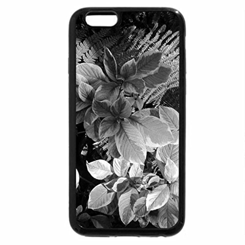 iPhone 6S Plus Case, iPhone 6 Plus Case (Black & White) - A perfect day at Edmonton garden 24