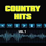 40 Country Hits, Vol. 1 [Explicit]