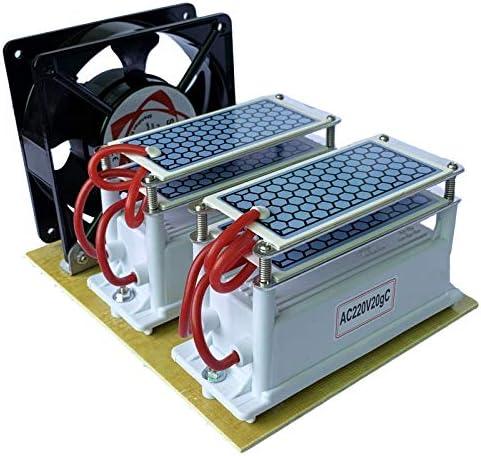 QWERTOUY 220 V / 110 V 20 g de cerámica del ozono del generador ...
