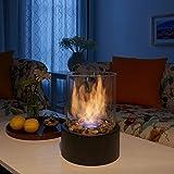 Danya B. Indoor/Outdoor Portable Tabletop Fire