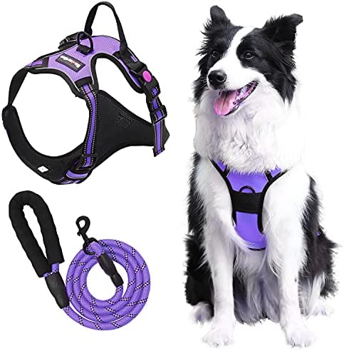 Esdartlus Dog Harness and Leash Set, NO Pull Adjustable Breathable Soft Padded Vest Harness, Reflective Oxford Pet Harness with Training Handle Dog Vest for Small to Large Dogs (Purple, S)