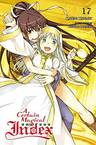 A Certain Magical Index, Vol  17 (light novel)