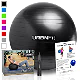 Exercise Ball (65 CM) for Stability & Yoga - Workout Guide Incuded - Professional Quality (Black)