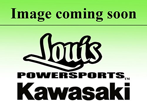95 kawasaki bayou 300 carburetor - 3