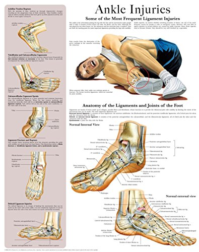 Ankle Injuries e-chart: Quick reference guide (Hand Chart Massage)