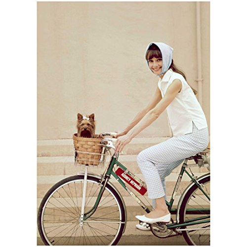 Audrey Hepburn Riding Bike on Backlot with Dog in Basket Smiling 8 x 10 Photo