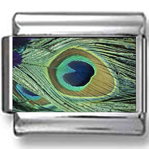 - Peacock Feather Eye Photo Italian Charm