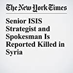Senior ISIS Strategist and Spokesman Is Reported Killed in Syria | Anne Barnard,Douglas Schorzman