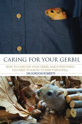 Caring for your Gerbil: How To Care For Your Gerbil and Everything You Need To Know To Keep Them - Care Gerbil