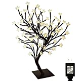 PMS 17inch 72 LEDs Cherry Blossom Desk Top Bonsai Tree Light with Low Voltage Transformer, UL Listed, Ideal for Christmas, Party, Wedding, Ceremony, Celebration Decoration(Warm White)
