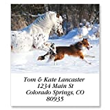 Best Friends Self-Adhesive, Flat-Sheet Select Address Labels (12 Designs)