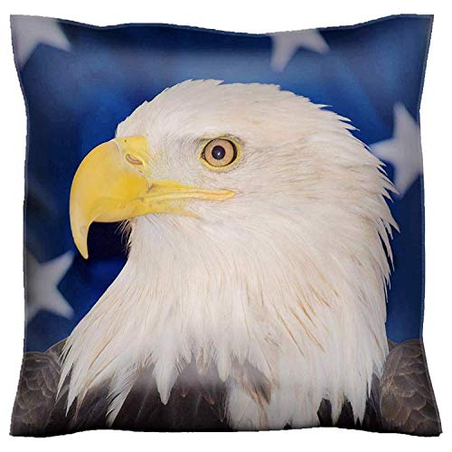 HFYZT Throw Pillow Case 18x18 Inch American Bald Eagle in Front of a USA Flag Throw Pillow Cushion Cover