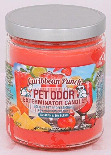 Caribbean Punch Pet Odor Exterminator 13 Ounce Jar Candle