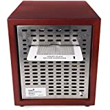 Ivation Ozone Generator Air Purifier, Ionizer
