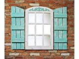 23.5'' wide X 36.5'' tall Farmhouse Arched Window Pane Mirror (shutters sold separately) Reclaimed Wood