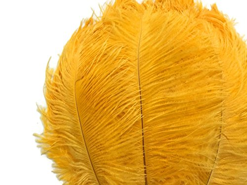 Ostrich Feathers, Gold Feathers - 10 Pieces - 11-13 Inch Long Ostrich Feathers (Mardi Gras Decorating)