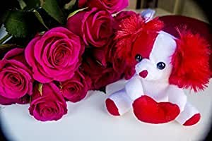 Valentines Day Gifts for Her - Cute Small Valentine Dog With Heart - Random Assorted Colors - One Plush Dog Per Order