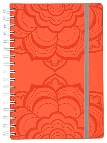 Mead Organizher Weekly Family Planner