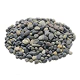 LYTIO - Decorative Mixed 1LB Pebble Rocks Different Shapes and Sizes from Mexico's Finest Beaches, 100% Organic Non Toxic Decorate your Home, Garden, Office, Pond, Pots