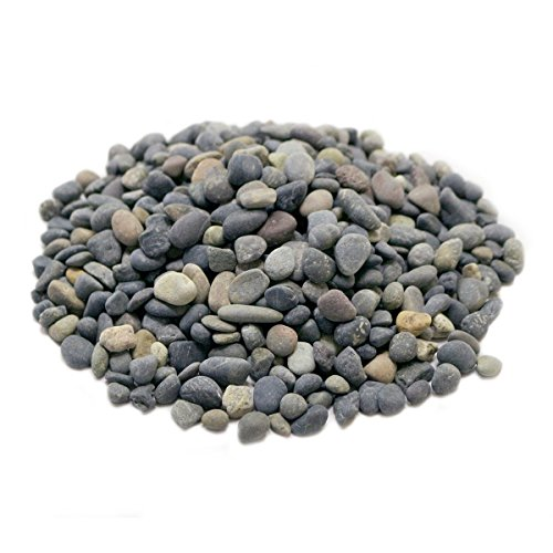 Rock Shape - LYTIO Decorative Mixed 2LB Pebble Rocks Different Shapes and Sizes from Mexico's Finest Beaches, 100% Organic Non Toxic Decorate your Home, Garden, Office, Pond, Pots