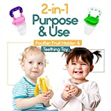 Baby Fruit Feeder Pacifier (2 Pack) - Fresh Food