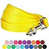 Blueberry Pet 19 Colors Durable Classic Dog Leash 5 ft x 3/8'', Blazing Yellow, X-Small, Basic Nylon Leashes for Puppies